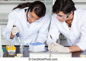focused, videnskab, studerende, indgåelse, en, experiment