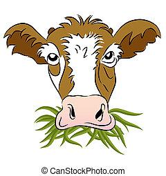 fodrat, gräs, ko