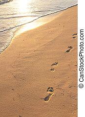 fodspor, på, sandet strand, hos, solopgang