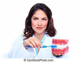 fogász, woman.