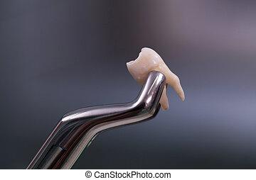 fogászati szerszám