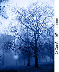 Fog 001 - Fog in a park