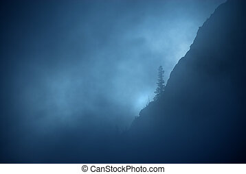 Fog and Isolated Pine Tree on Rugged Mountainside