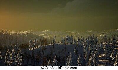 Fog and Snow on Mountain - fog and snow on mountain in storm