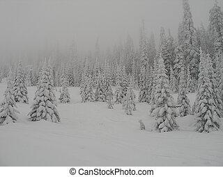 Fog and Snow - Very snowy and foggy landscape. Snow Peaks...
