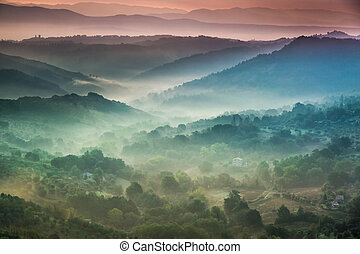 Fog at dawn over the valley in Tuscany