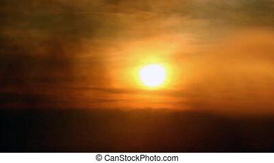 Fog atmosphere silhouettes birds in sunlight