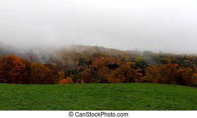 Fog Blows In Across Vibrant Hillside During Fall Colors in...