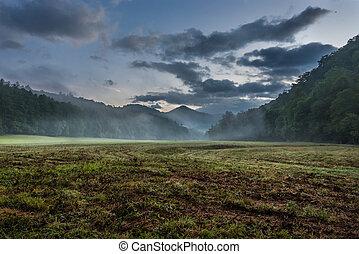 Fog Blows Through Grassy Valley in Summer