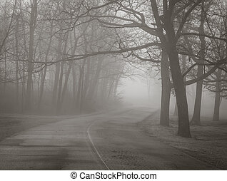Fog creeps in along the road in winter forest