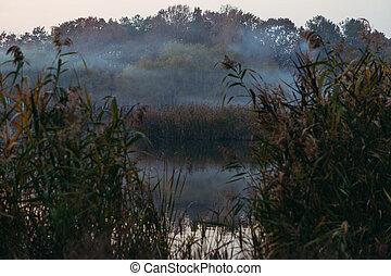Fog. Fog on the lake.