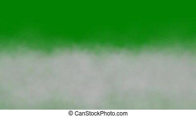 fog - green screen