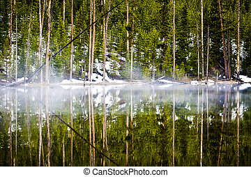 Fog Hangs on Reflective Lake in the Forest