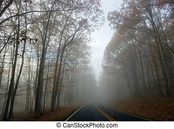 Fog in a forest in autumn