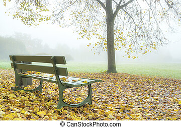 Fog in autumn park.