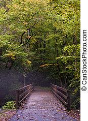 Fog in Great Smoky Mountains - Bridge over mountain stream...