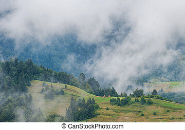 Fog in morning on the mountains.