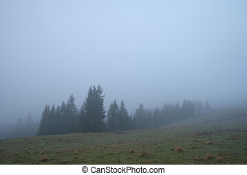 Fog in mountain valley
