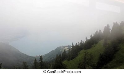 Fog in the mountain forests HD