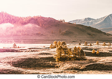 Fog in the mountain valley. Morning fog over the lake in the Altai mountains.