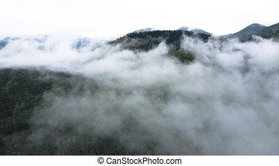 Fog in the mountains. Carpathians. Ukraine. Aerial. Stock video footage UHD (4K) / 3840-2160 / MP4 / Codec H.264 / 30 fps.