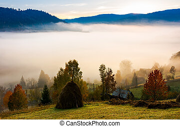 fog in the rural valley. gorgeous sunrise in autumn...