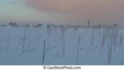 fog in the winter evening in an empty field.