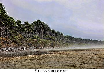 Fog Lifting From Beach