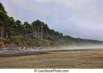 Fog Lifting From Beach