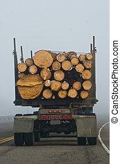 Fog Logging - Vertical photo of the back end of a logging...