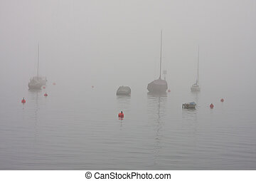 fog on a lake