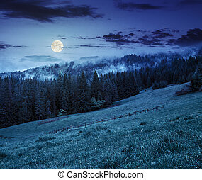 fog on cold sunrise in mountains at night - cold morning fog...