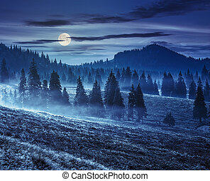 fog on hot sunrise in mountains at night - cold morning fog...