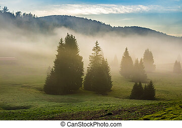 fog on hot sunrise in mountains - cold morning fog with hot...