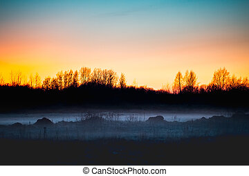 Fog on the field in forest at sunset