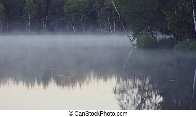 Fog on the forest lake in the morning. - Fog on the forest...