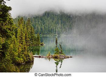 Fog on the lake