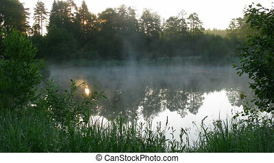 Fog over a pond