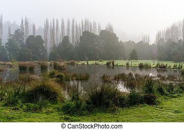 Fog over autumn lake