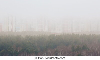 Fog over forest and city