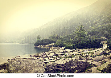 Fog over mountains lake.