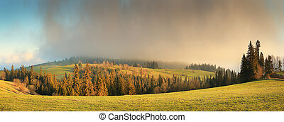 Fog over summer hills