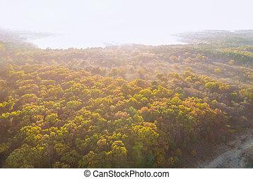 Fog over the autumn trees beautiful sunset panorama landscape