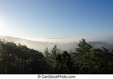 fog over the valley