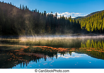 fog rise from the forest lake in mountains - fog rise over...