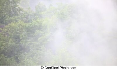 Fog rising and swirling, HD