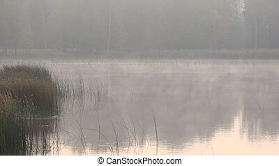 Fog rolls on summer morning over lake. 4K - Fog rolls on...