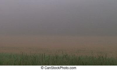 Fog Time Lapse