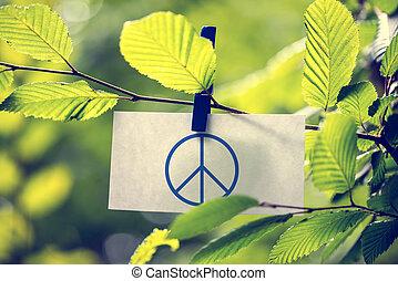 fogalom, béke