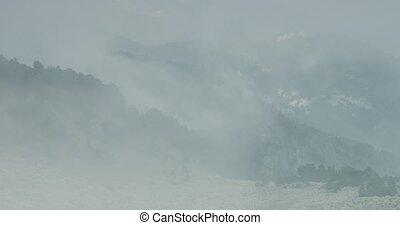 fogbank, und, nebel, an, vallon, de, caralaite, frankreich
